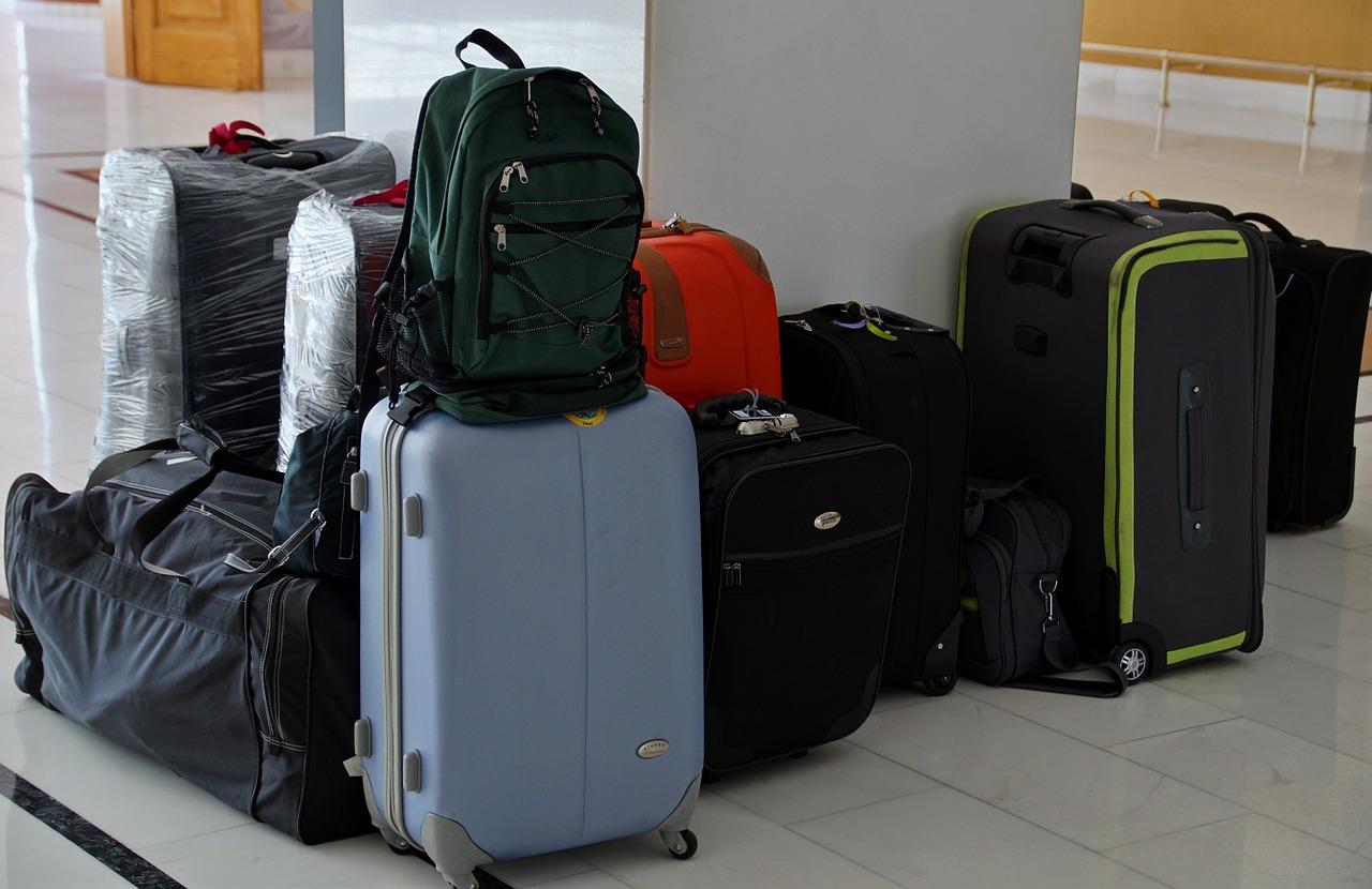 système de portage de la valise
